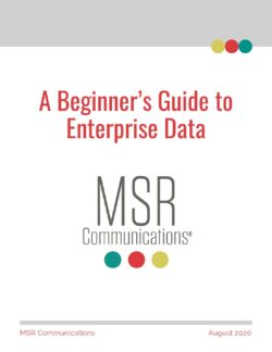 Ebook: A Beginner's Guide to Enterprise Data